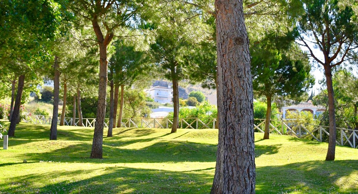Localización - Reserva del Higuerón