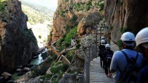 Cosas para hacer en primavera cerca de Reserva del Higuerón - Reserva del Higuerón