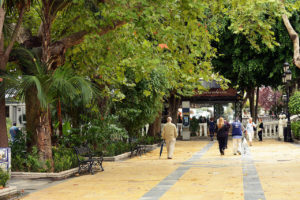 A walk in Marbella, some kilometres from Reserva del Higueron 5