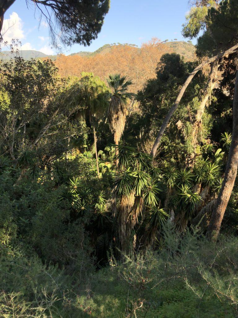 Disfrutar en familia en Málaga: jardines y parques 1