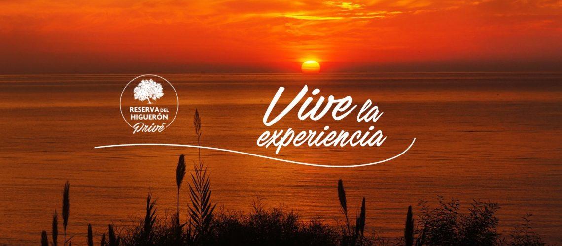 Razones para vivir en la Costa del Sol